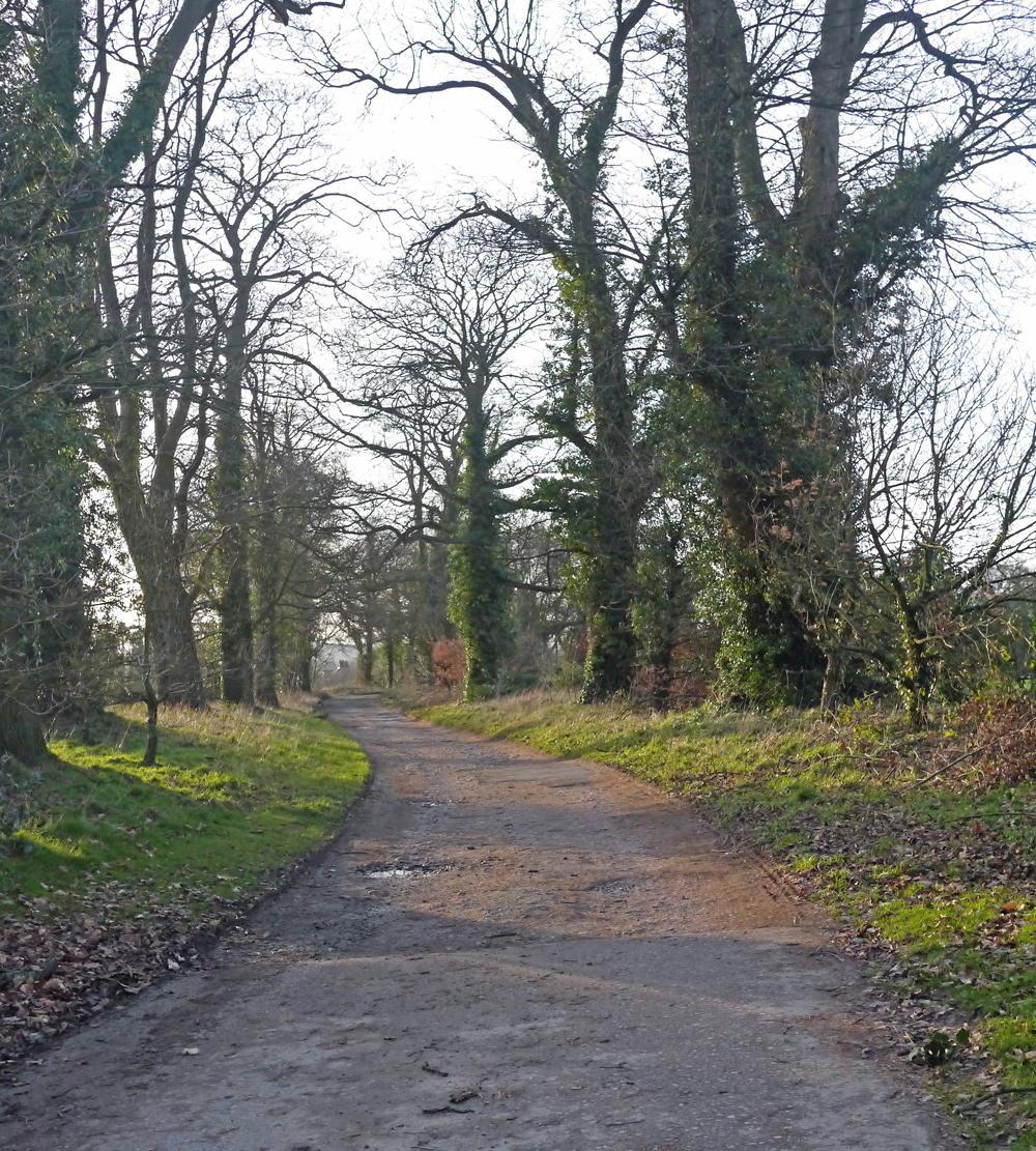 Puddle Jumping Lane