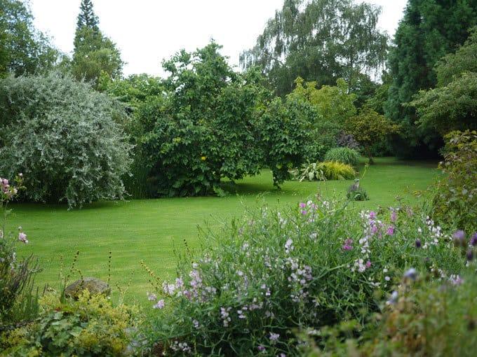 english-country-garden-shro