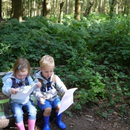 Wyre Forest Gruffalo Hunting