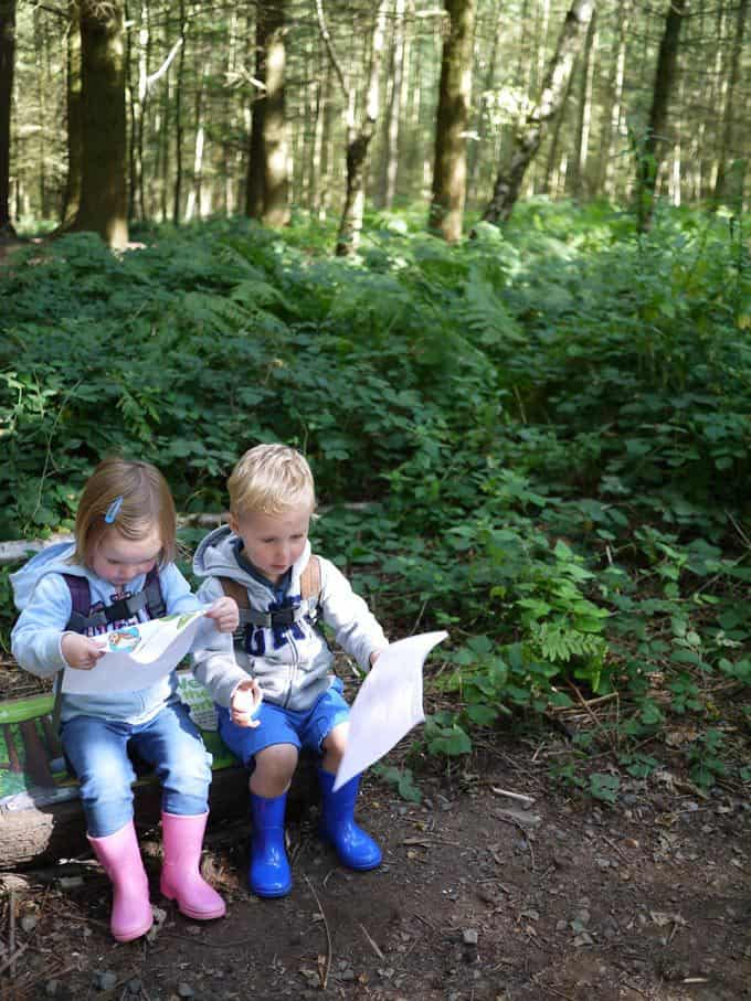 The Wyre Forest Gruffalo Trail