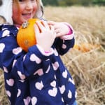 Hatton Adventure World Pumpkin Week