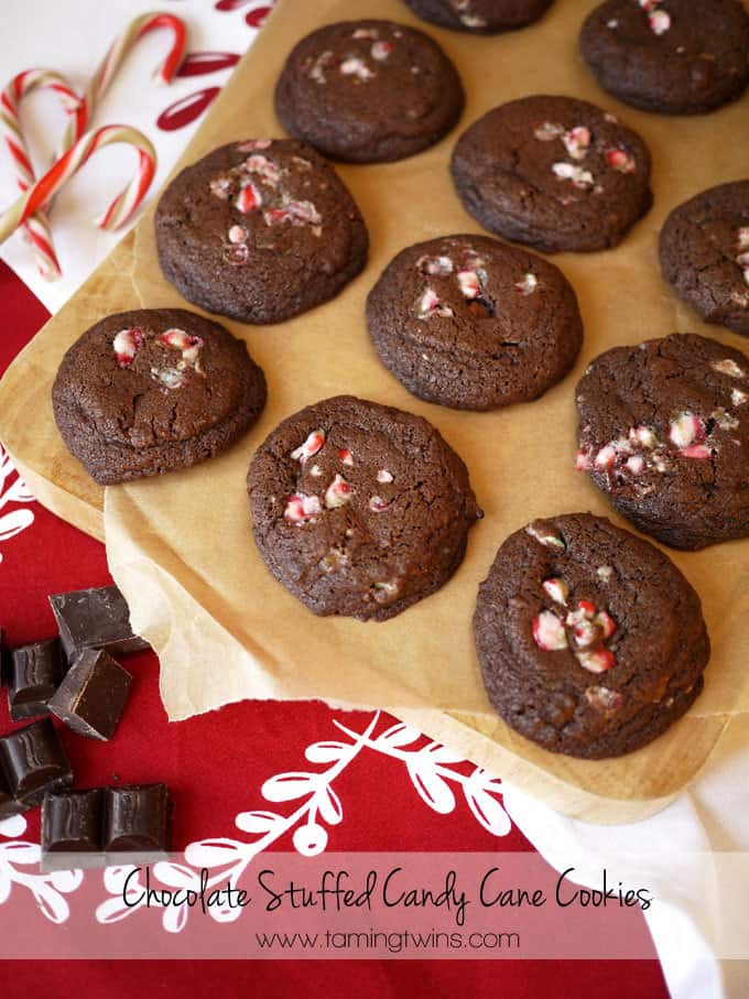 Chocolate Candy Cane Cookies Food Blogger Cookie Swap