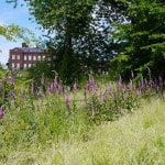Dudmaston Estate, Bridgnorth - National Trust