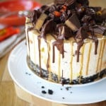 Reece's Peanut Butter Cup No Bake Cheesecake - You MUST try this most amazing, giant cheesecake! A Peanut Butter Oreo cookie base, topped with light but creamy cheesecake mix, filled with heaps of Reece's pieces! http://www.tamingtwins.com