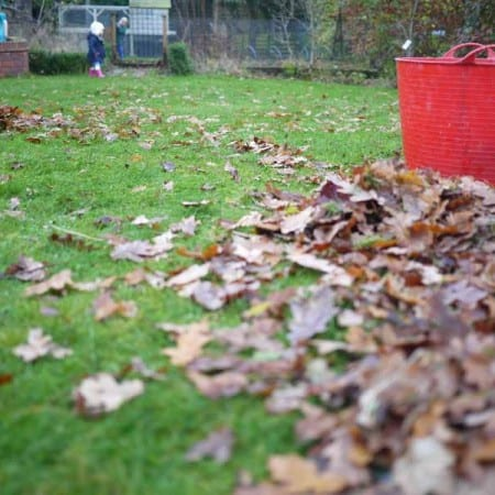 The Art of Inefficient Leaf Collecting