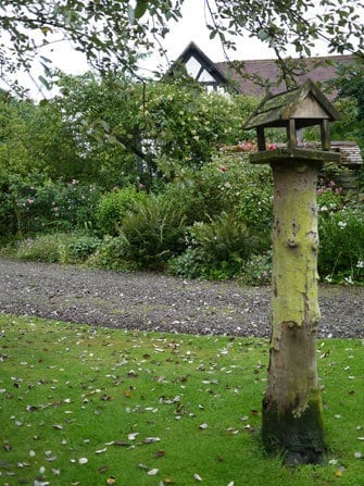 tree-trunk-bird-table-shropshire-10