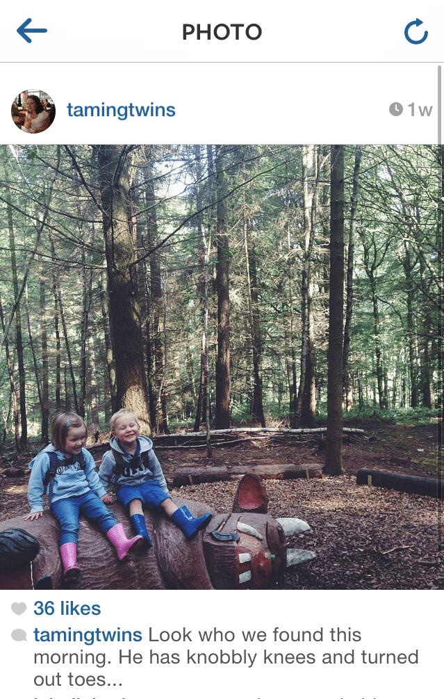 Gruffalo Trail Wyre Forest Twins