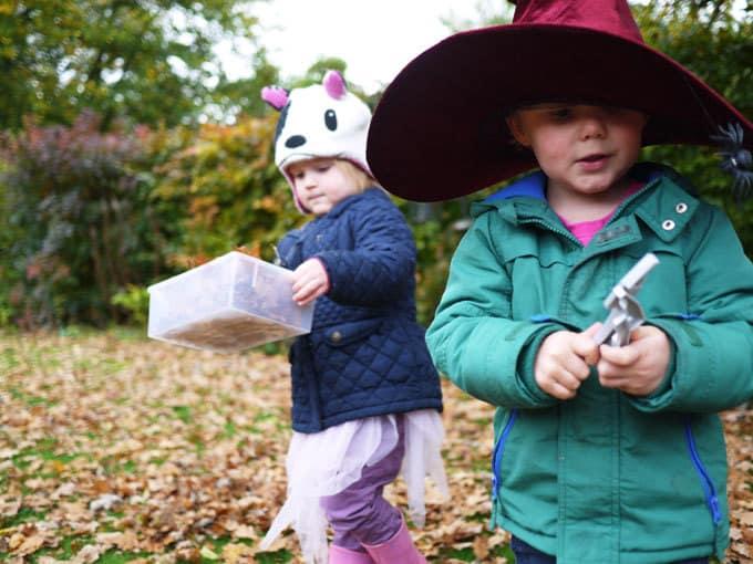 Autumn Leaf Craft