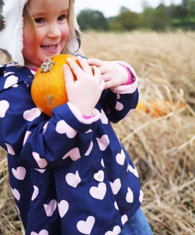 Hatton Adventure World Pumpkin Week