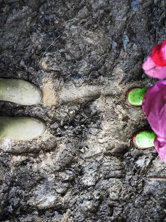 Wyre Forest Feet