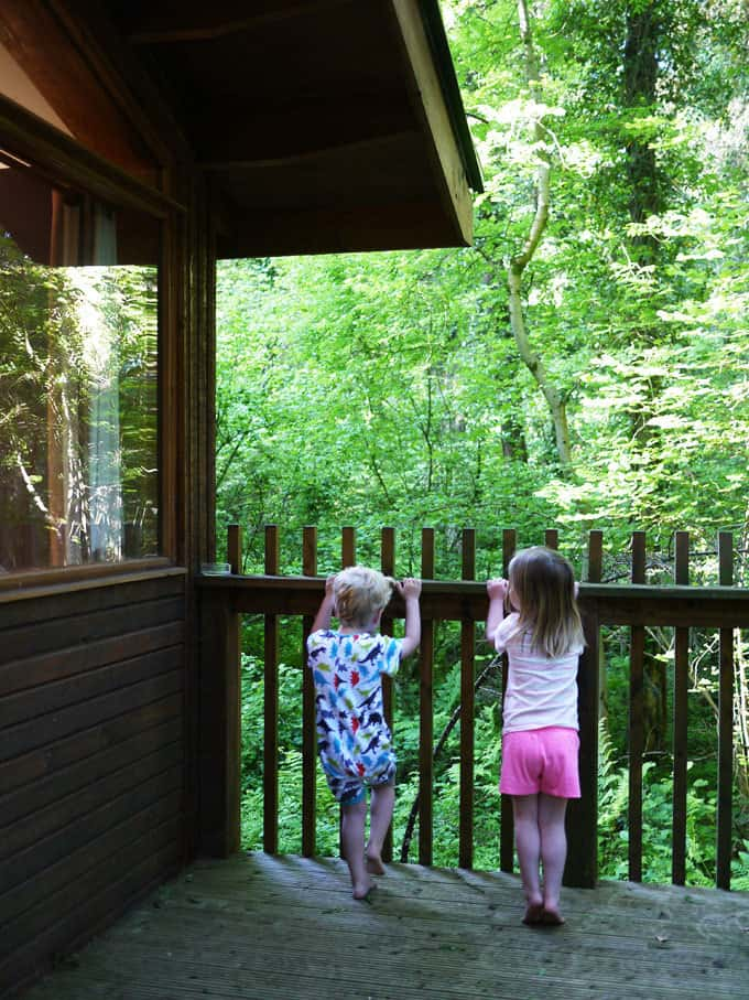 Forest Holidays Forest of Dean