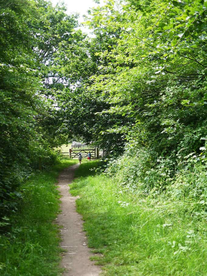Dudmaston Estate, Bridgnorth - National Trust