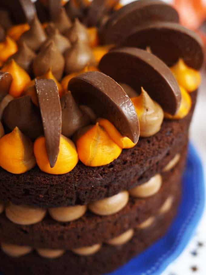 Chocolate Orange Layer Cake - The perfect alternative to a festive fruit cake for Christmas. Layers of chocolate, sandwiched with orange flavoured chocolate buttercream.