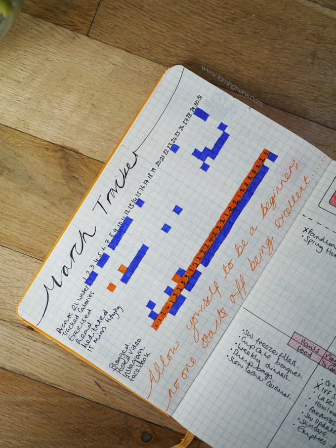 How a Bullet Journal Changed my Life in 6 Weeks - A peek inside the first 6 weeks of my bullet journal, including a video, my weekly spreads, monthly calendars, dailies, collections and other bits and bobs I am loving from my first bullet journal set up.   TamingTwins.com