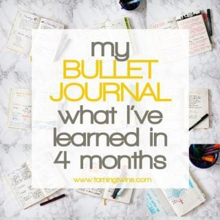 Bullet Journal Review – What I've Learned in 4 Months